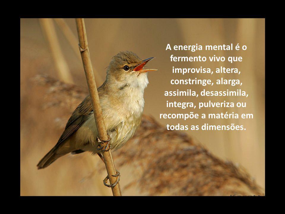 A energia mental é o fermento vivo que improvisa, altera, constringe, alarga, assimila, desassimila, integra, pulveriza ou recompõe a matéria em todas as dimensões.