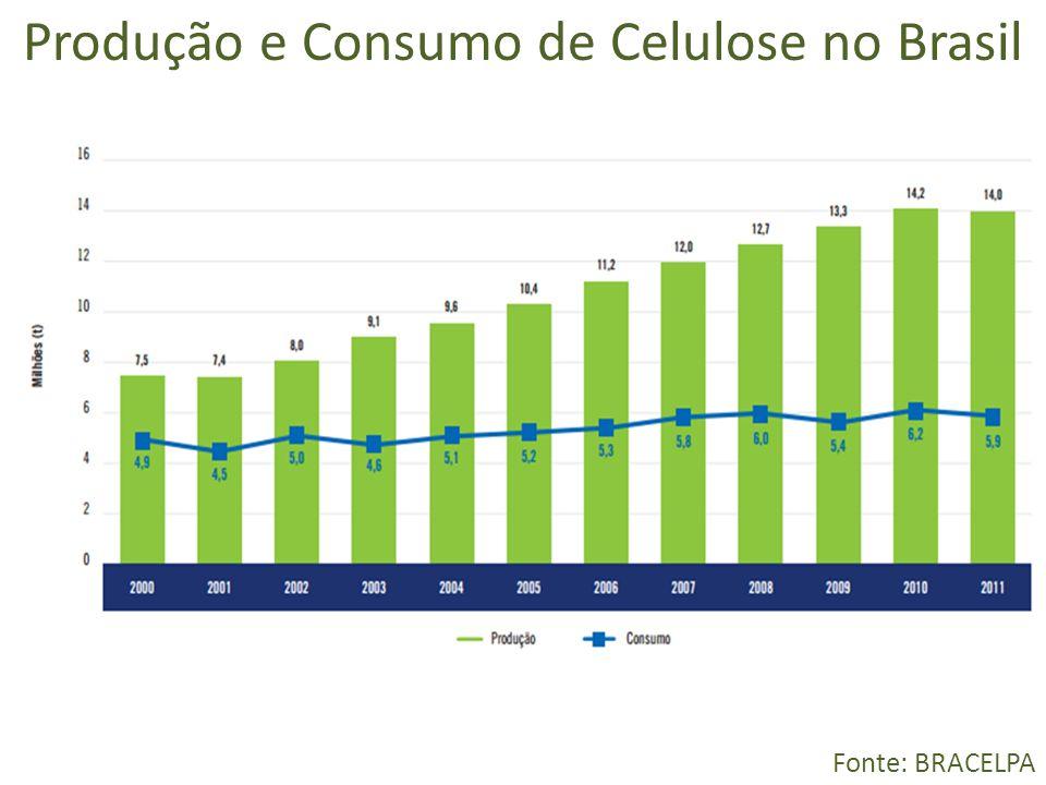 Produção e Consumo de Celulose no Brasil