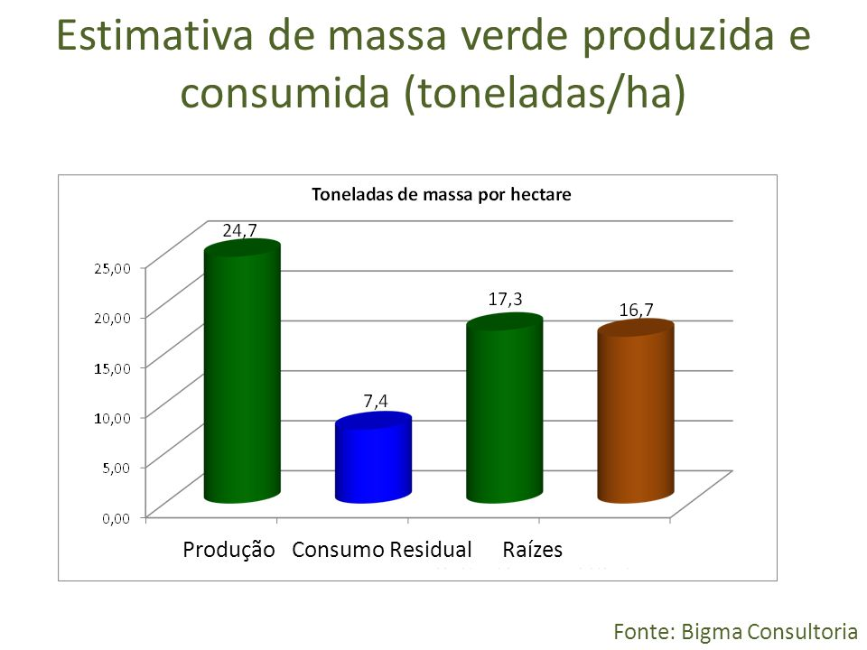 Estimativa de massa verde produzida e consumida (toneladas/ha)