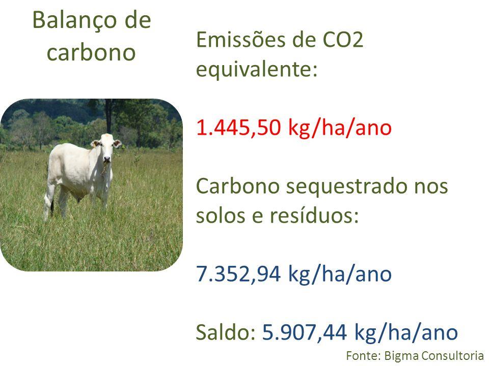 Balanço de carbono Emissões de CO2 equivalente: 1.445,50 kg/ha/ano
