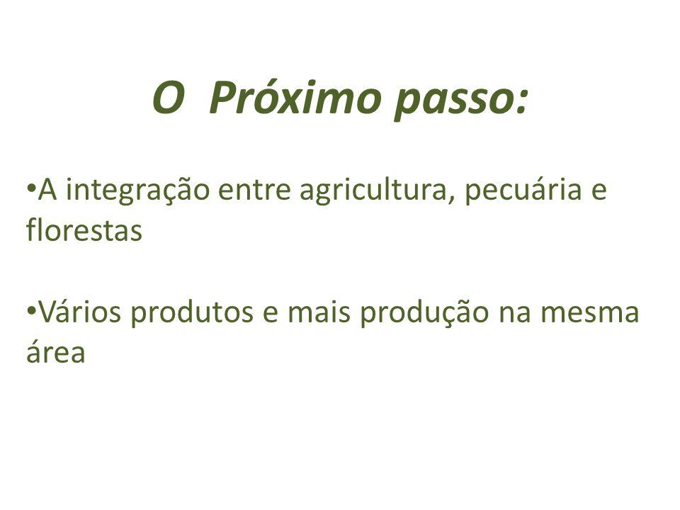 O Próximo passo: A integração entre agricultura, pecuária e florestas