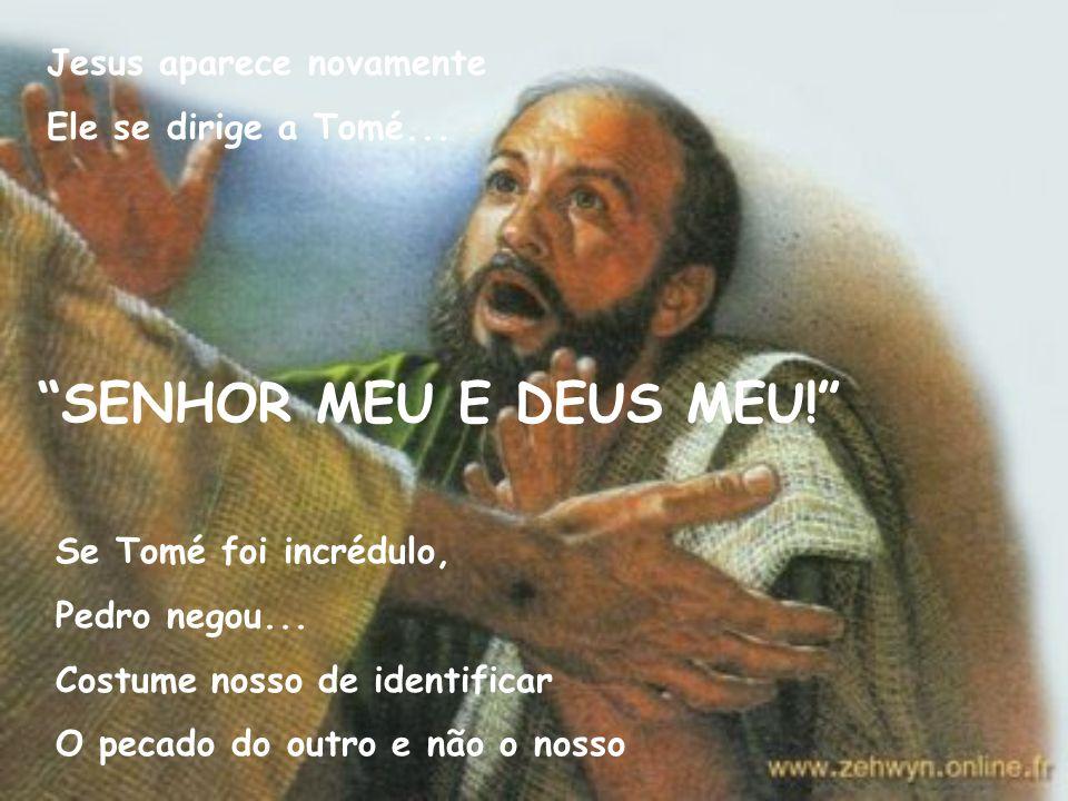 SENHOR MEU E DEUS MEU! Jesus aparece novamente