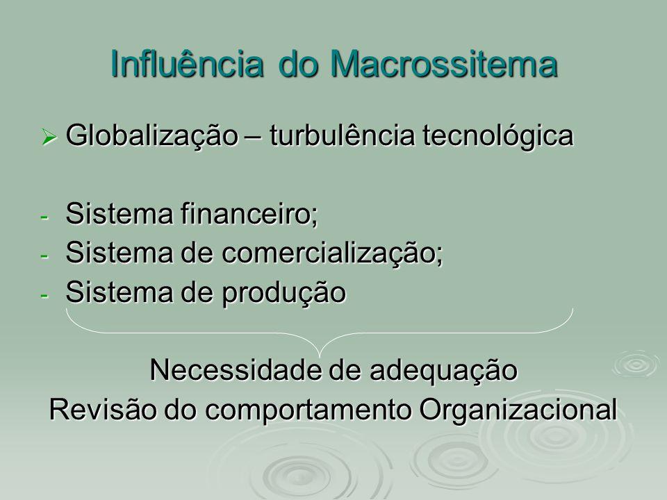 Influência do Macrossitema