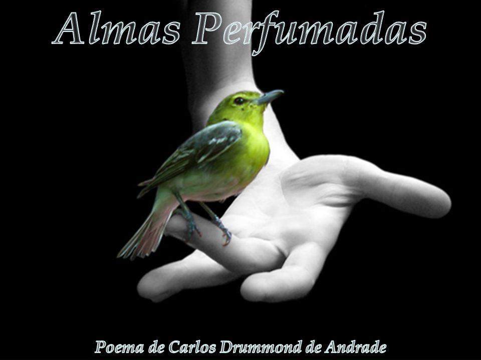 Poema de Carlos Drummond de Andrade