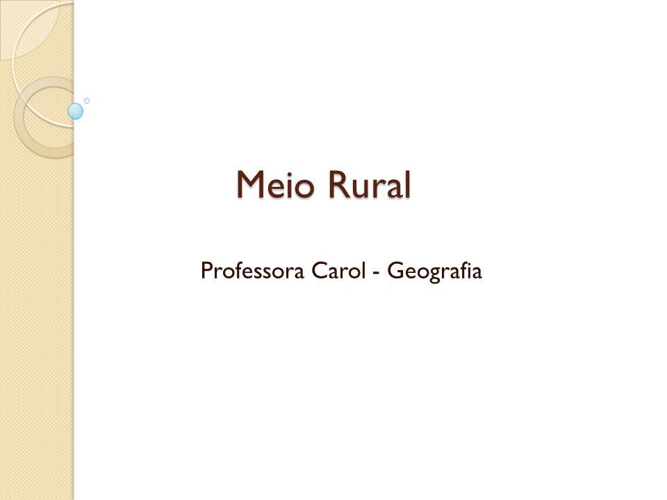 Professora Carol - Geografia