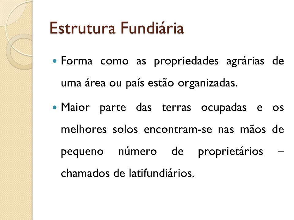 Estrutura Fundiária Forma como as propriedades agrárias de uma área ou país estão organizadas.