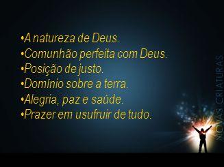 A natureza de Deus. Comunhão perfeita com Deus. Posição de justo. Domínio sobre a terra. Alegria, paz e saúde.