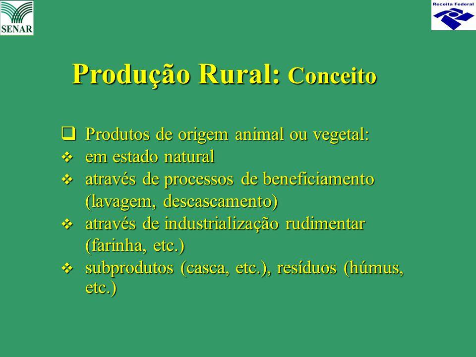 Produção Rural: Conceito