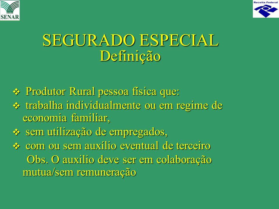 SEGURADO ESPECIAL Definição