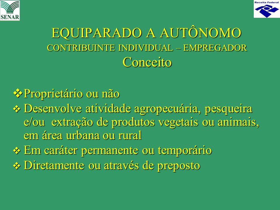 EQUIPARADO A AUTÔNOMO CONTRIBUINTE INDIVIDUAL – EMPREGADOR Conceito