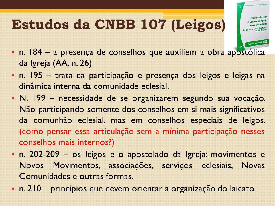 Estudos da CNBB 107 (Leigos)
