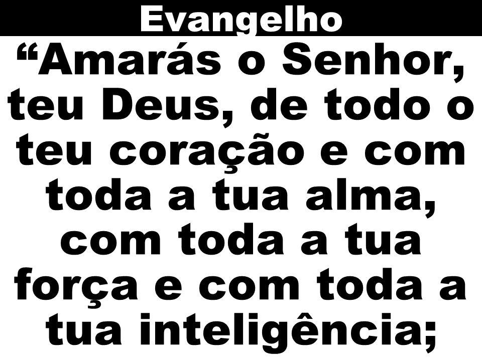 Evangelho Amarás o Senhor, teu Deus, de todo o teu coração e com toda a tua alma, com toda a tua força e com toda a tua inteligência;