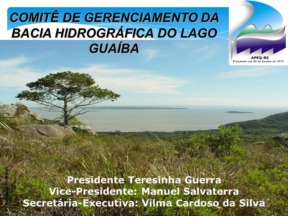 COMITÊ DE GERENCIAMENTO DA BACIA HIDROGRÁFICA DO LAGO GUAÍBA