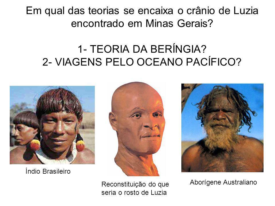 Em qual das teorias se encaixa o crânio de Luzia encontrado em Minas Gerais 1- TEORIA DA BERÍNGIA 2- VIAGENS PELO OCEANO PACÍFICO