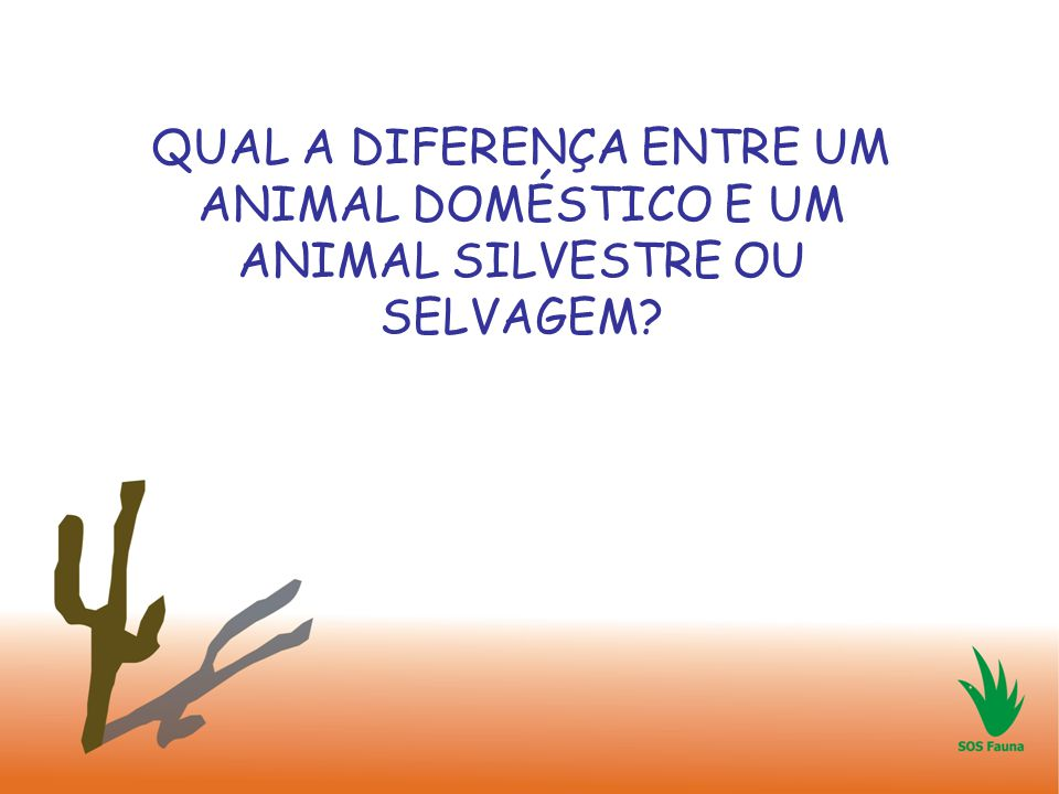 QUAL A DIFERENÇA ENTRE UM ANIMAL DOMÉSTICO E UM ANIMAL SILVESTRE OU SELVAGEM