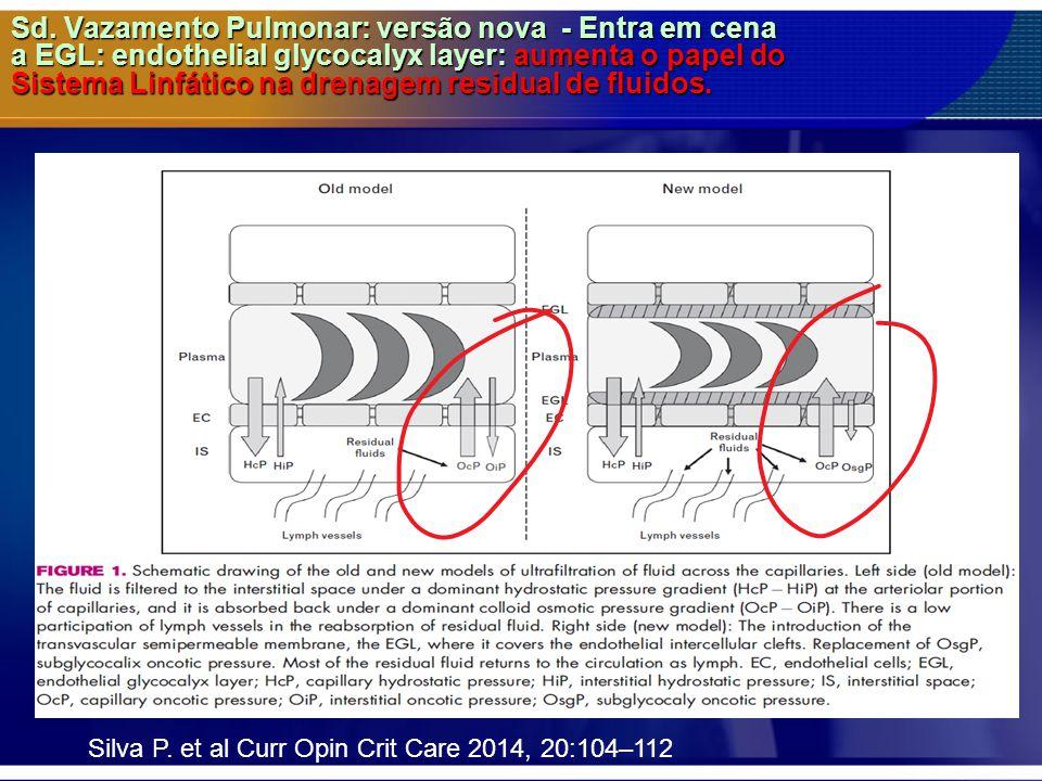 Sd. Vazamento Pulmonar: versão nova - Entra em cena a EGL: endothelial glycocalyx layer: aumenta o papel do Sistema Linfático na drenagem residual de fluidos.