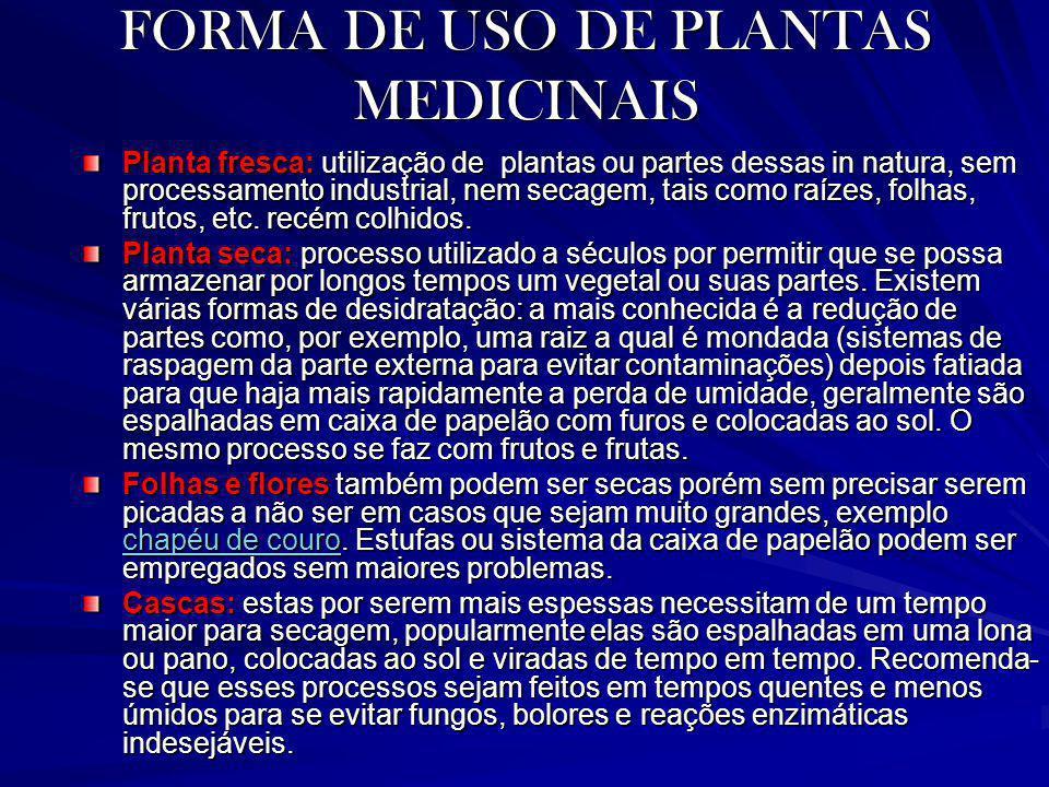 FORMA DE USO DE PLANTAS MEDICINAIS