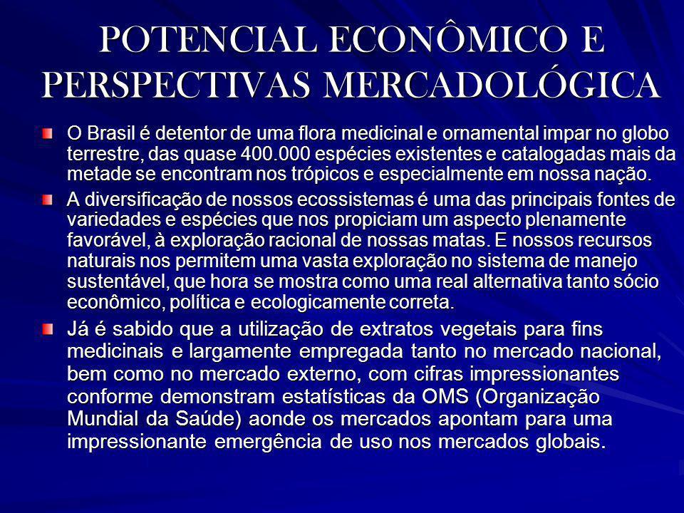 POTENCIAL ECONÔMICO E PERSPECTIVAS MERCADOLÓGICA