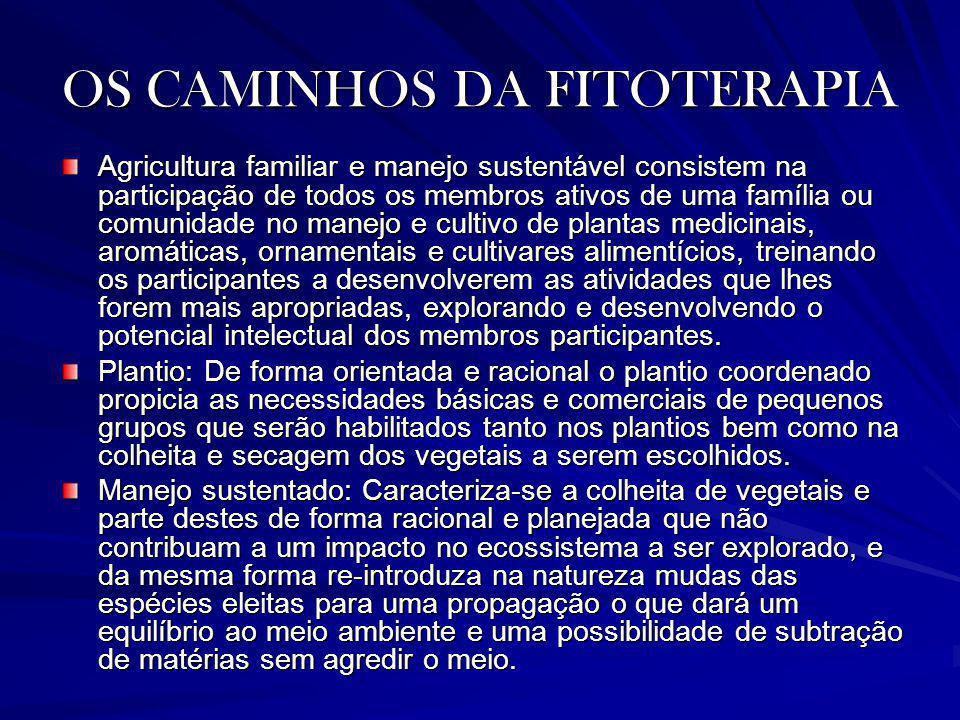 OS CAMINHOS DA FITOTERAPIA