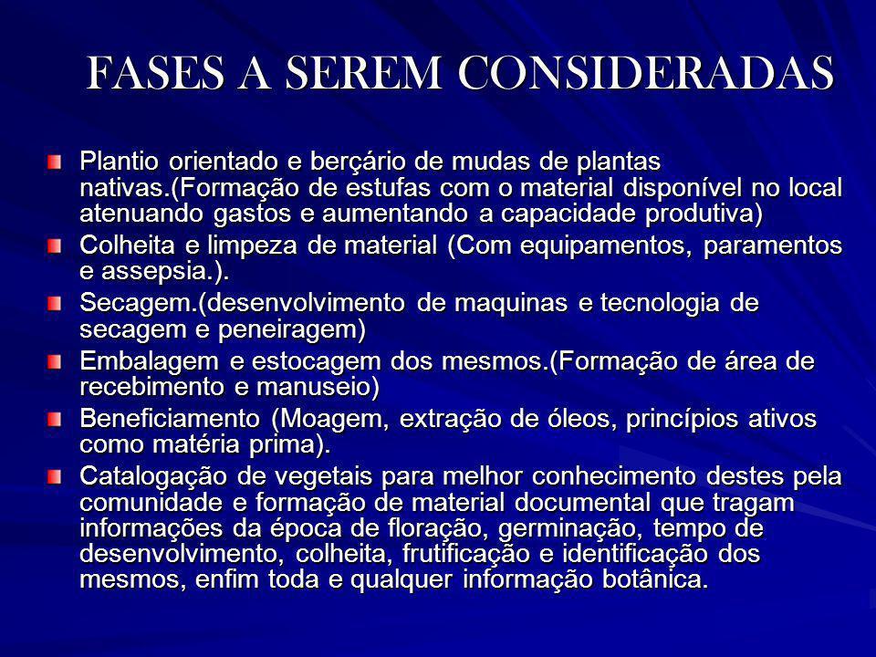 FASES A SEREM CONSIDERADAS