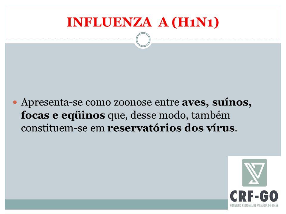 INFLUENZA A (H1N1) Apresenta-se como zoonose entre aves, suínos, focas e eqüinos que, desse modo, também constituem-se em reservatórios dos vírus.