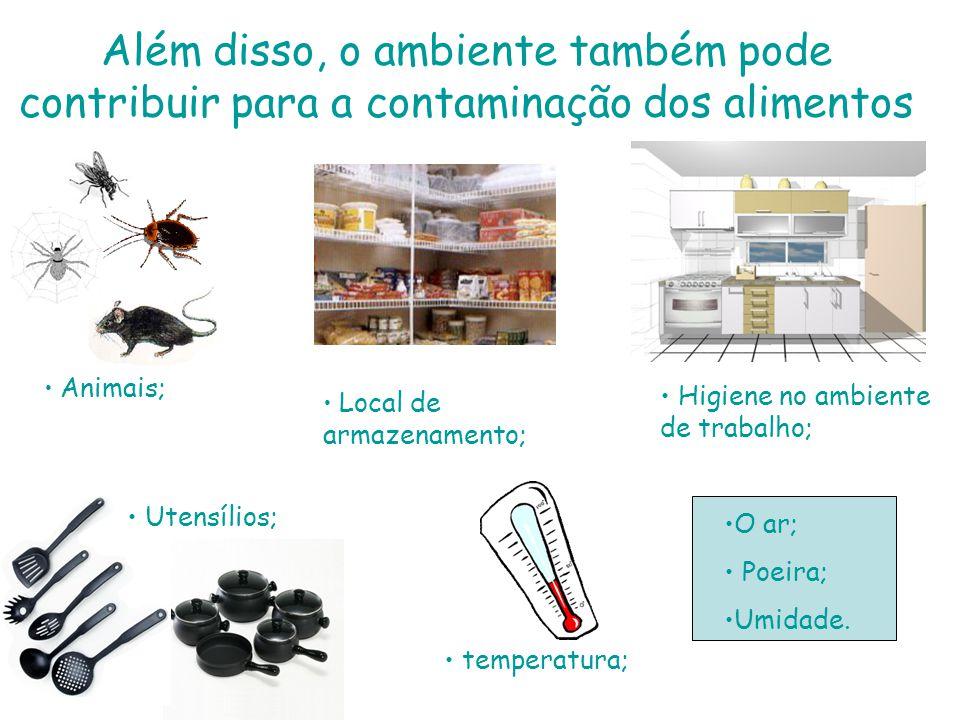 Além disso, o ambiente também pode contribuir para a contaminação dos alimentos