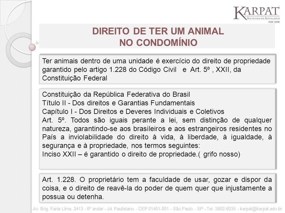 DIREITO DE TER UM ANIMAL NO CONDOMÍNIO
