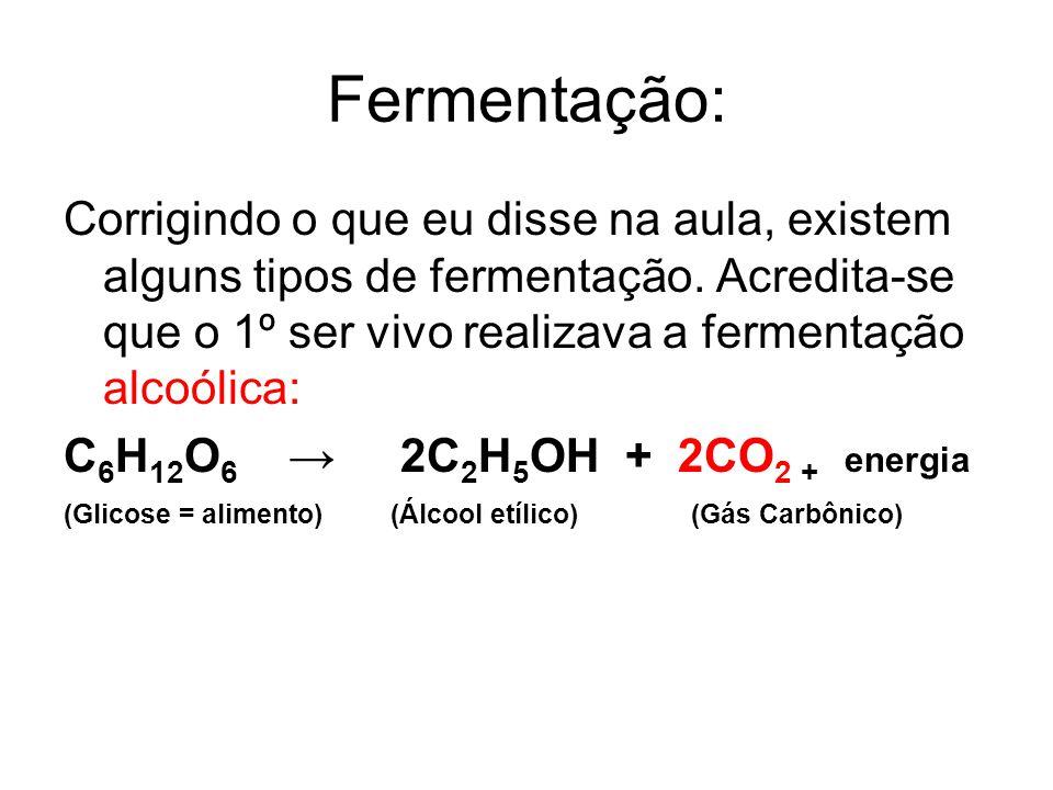 Fermentação: Corrigindo o que eu disse na aula, existem alguns tipos de fermentação. Acredita-se que o 1º ser vivo realizava a fermentação alcoólica: