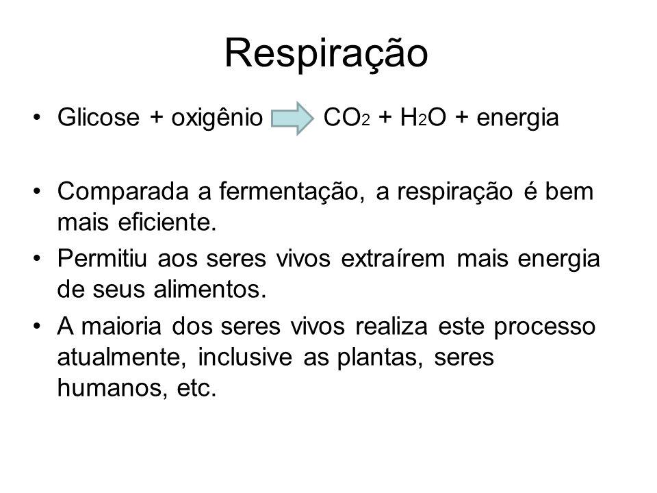 Respiração Glicose + oxigênio CO2 + H2O + energia