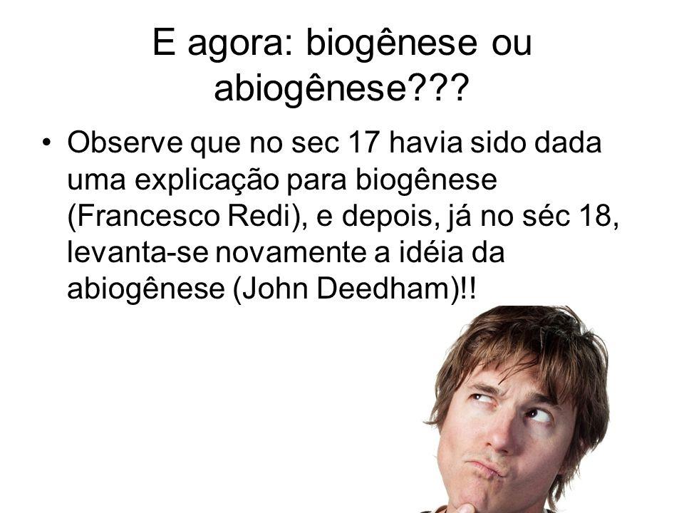E agora: biogênese ou abiogênese
