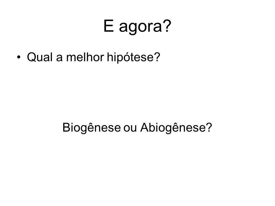 Biogênese ou Abiogênese