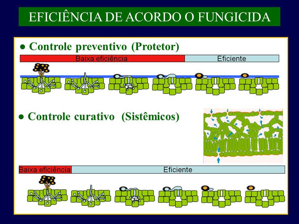 ● Controle preventivo (Protetor) ● Controle curativo (Sistêmicos)