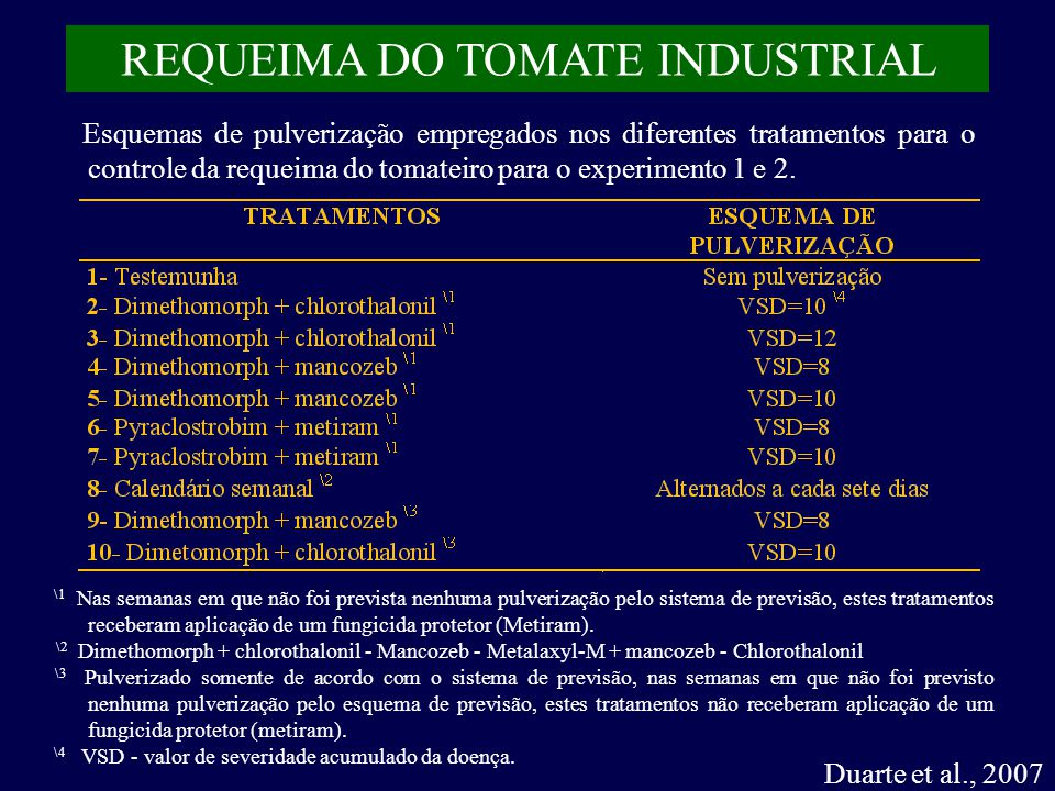 REQUEIMA DO TOMATE INDUSTRIAL