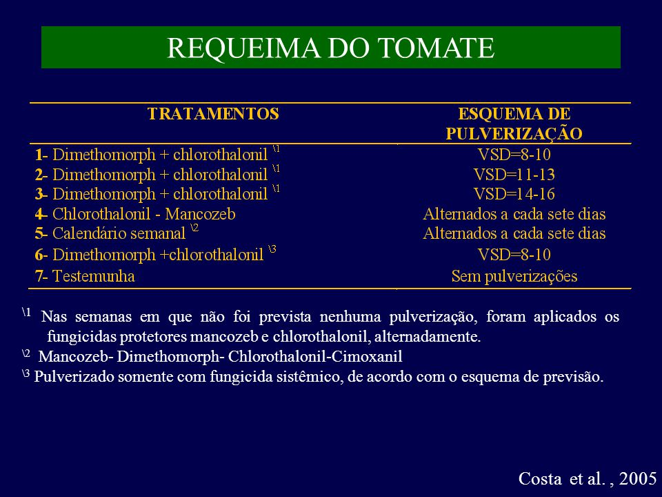 REQUEIMA DO TOMATE