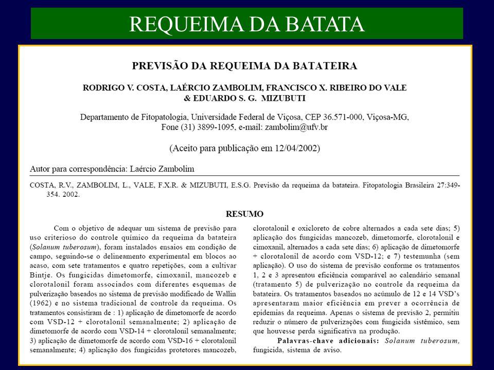 REQUEIMA DA BATATA