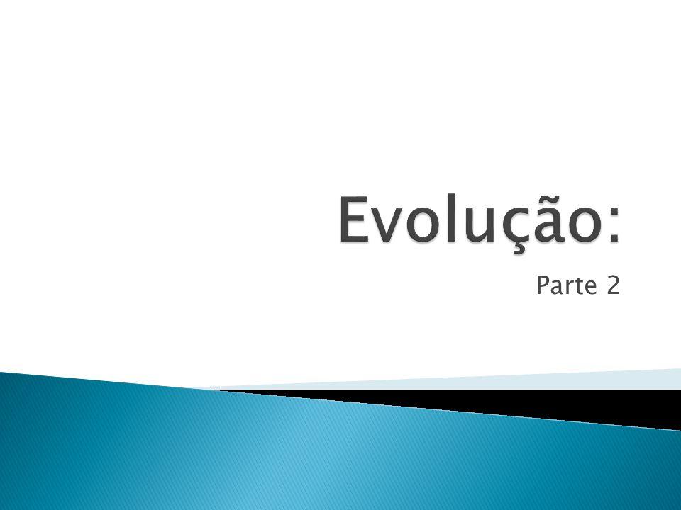 Evolução: Parte 2