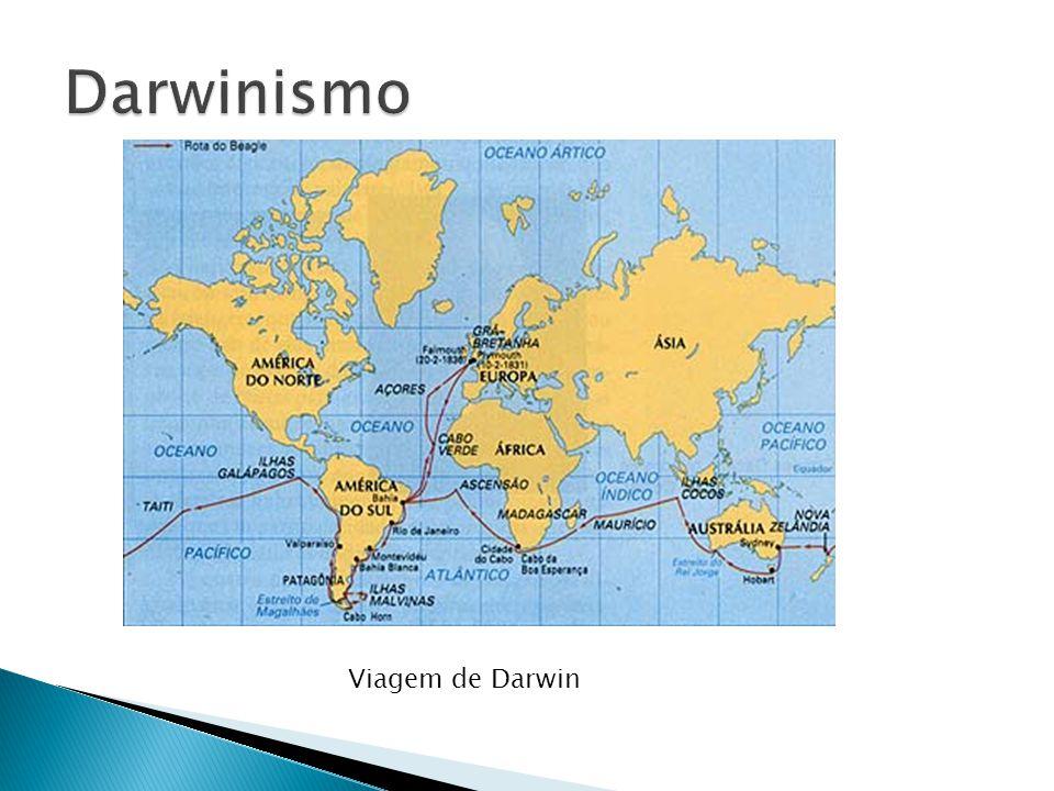 Darwinismo Viagem de Darwin