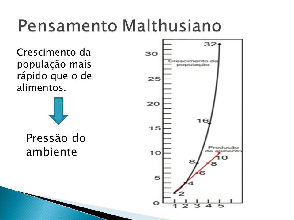 Pensamento Malthusiano
