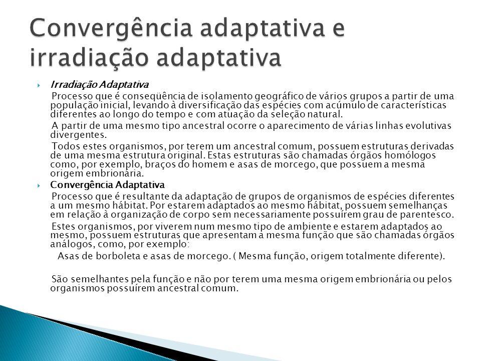 Convergência adaptativa e irradiação adaptativa