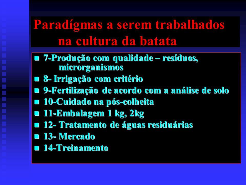 Paradígmas a serem trabalhados na cultura da batata
