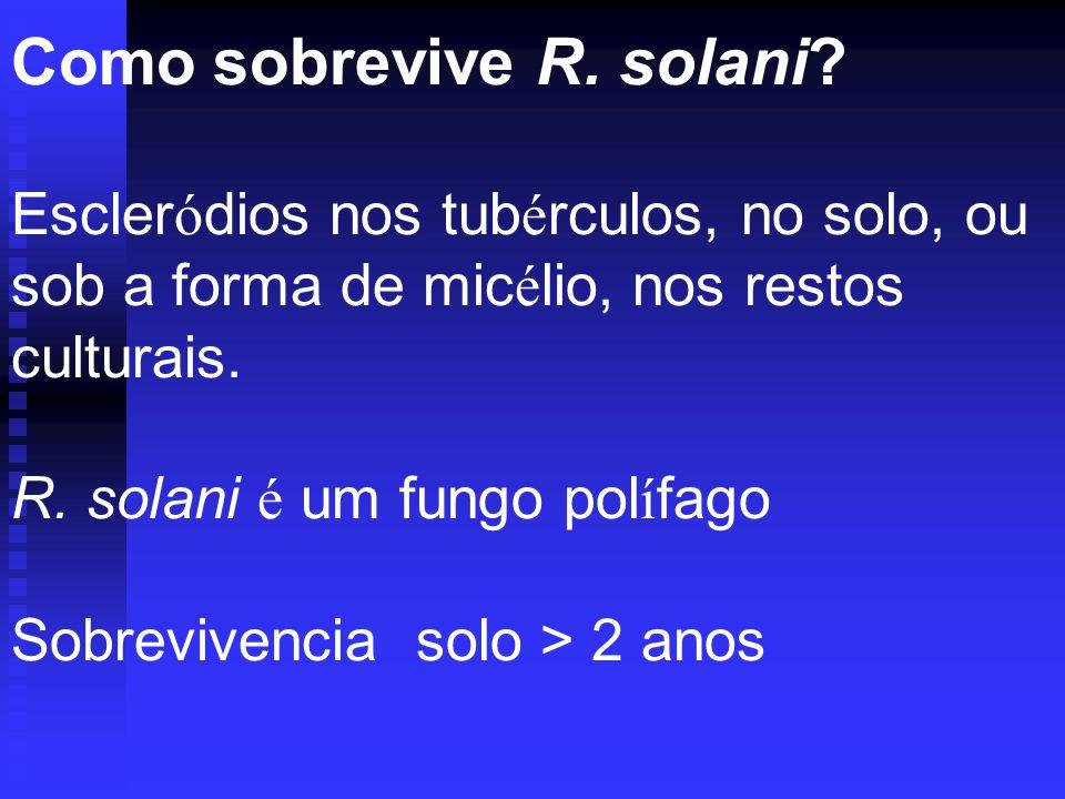 Como sobrevive R. solani