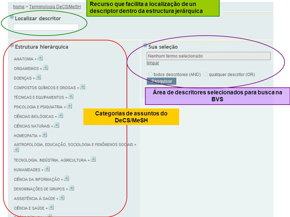 Área de descritores selecionados para busca na BVS