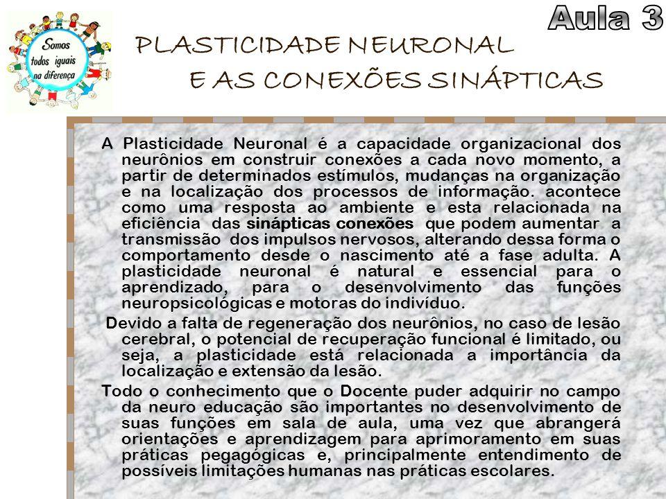 PLASTICIDADE NEURONAL E AS CONEXÕES SINÁPTICAS