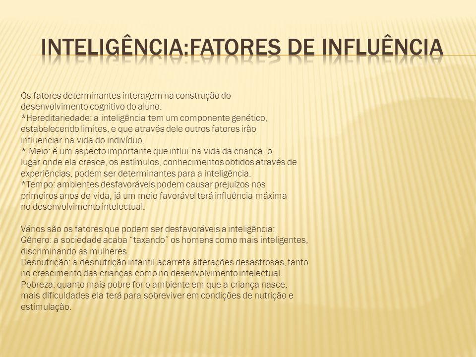INTELIGÊNCIA:FATORES DE INFLUÊNCIA