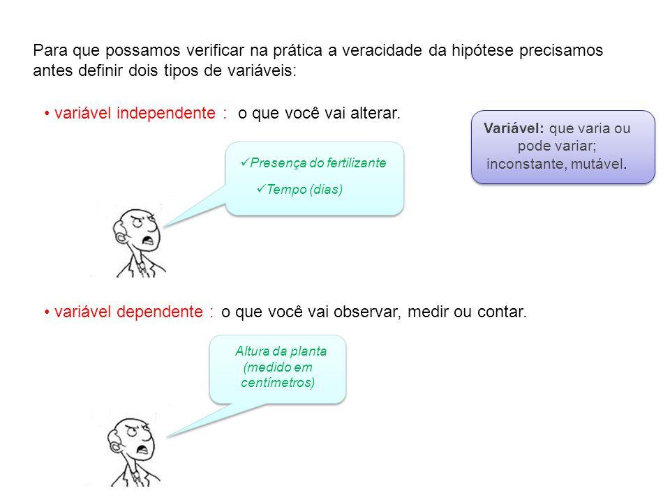 variável independente : o que você vai alterar.