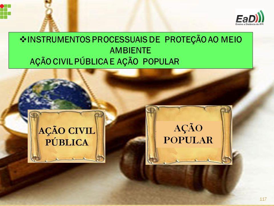 INSTRUMENTOS PROCESSUAIS DE PROTEÇÃO AO MEIO AMBIENTE