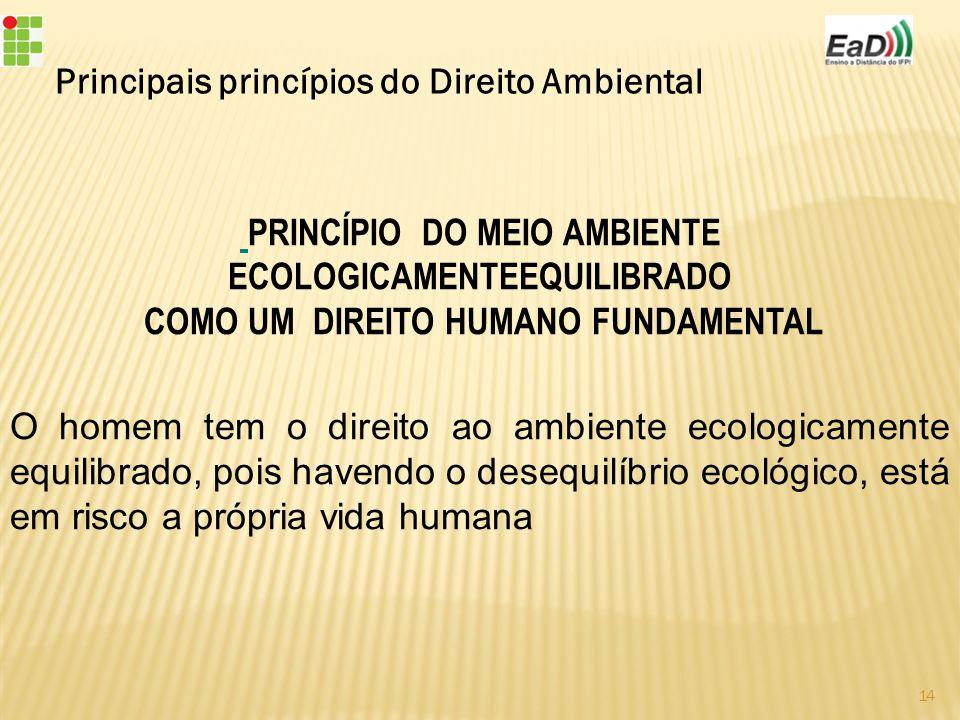 PRINCÍPIO DO MEIO AMBIENTE ECOLOGICAMENTEEQUILIBRADO