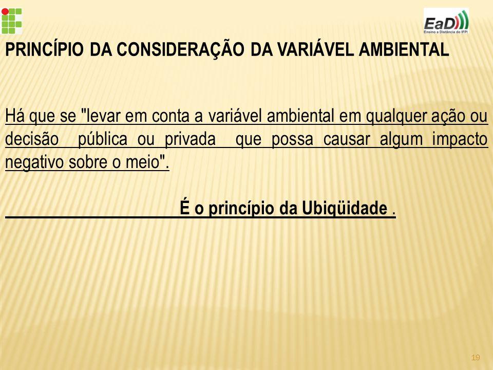PRINCÍPIO DA CONSIDERAÇÃO DA VARIÁVEL AMBIENTAL