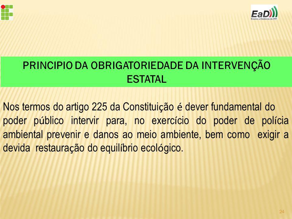 PRINCIPIO DA OBRIGATORIEDADE DA INTERVENÇÃO ESTATAL
