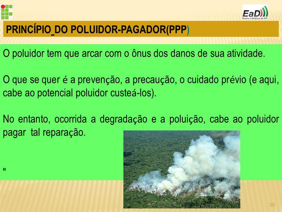 PRINCÍPIO DO POLUIDOR-PAGADOR(PPP)